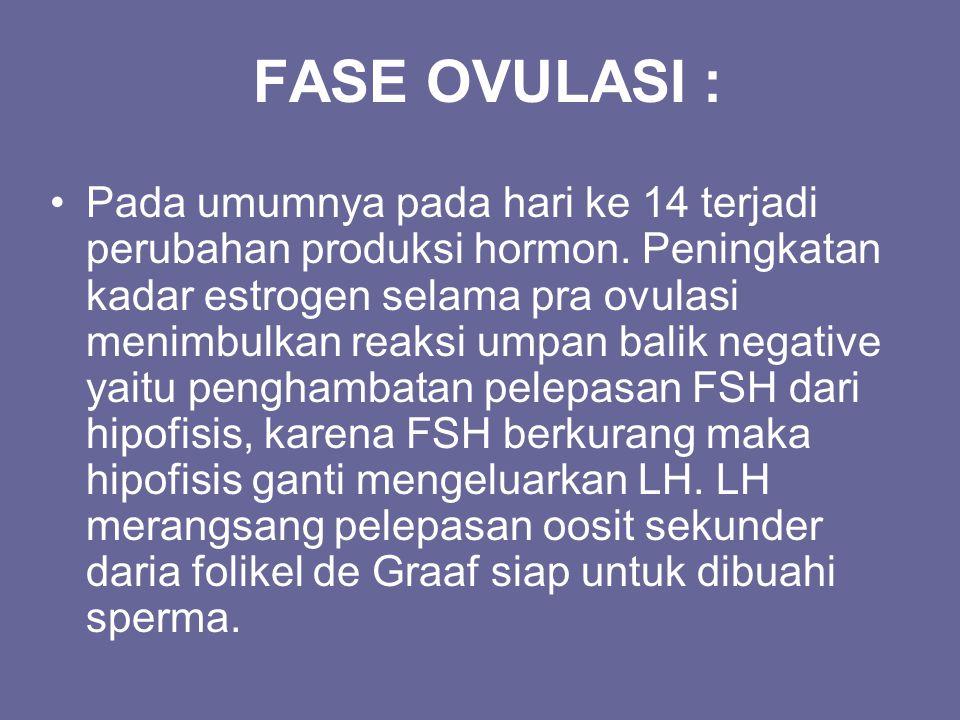 FASE OVULASI :