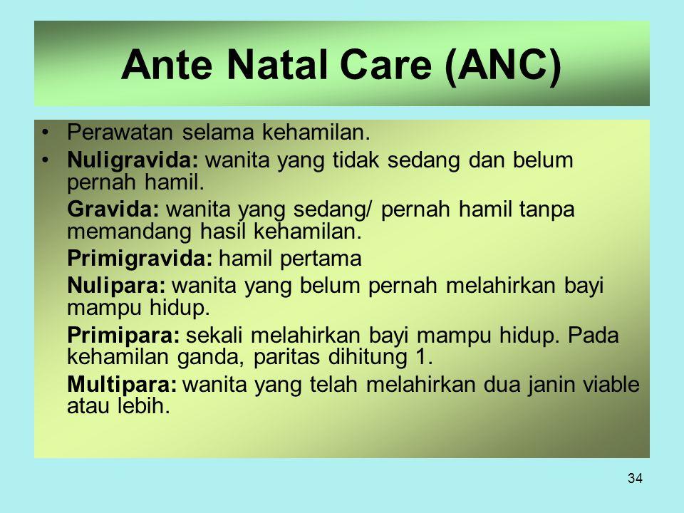 Ante Natal Care (ANC) Perawatan selama kehamilan.