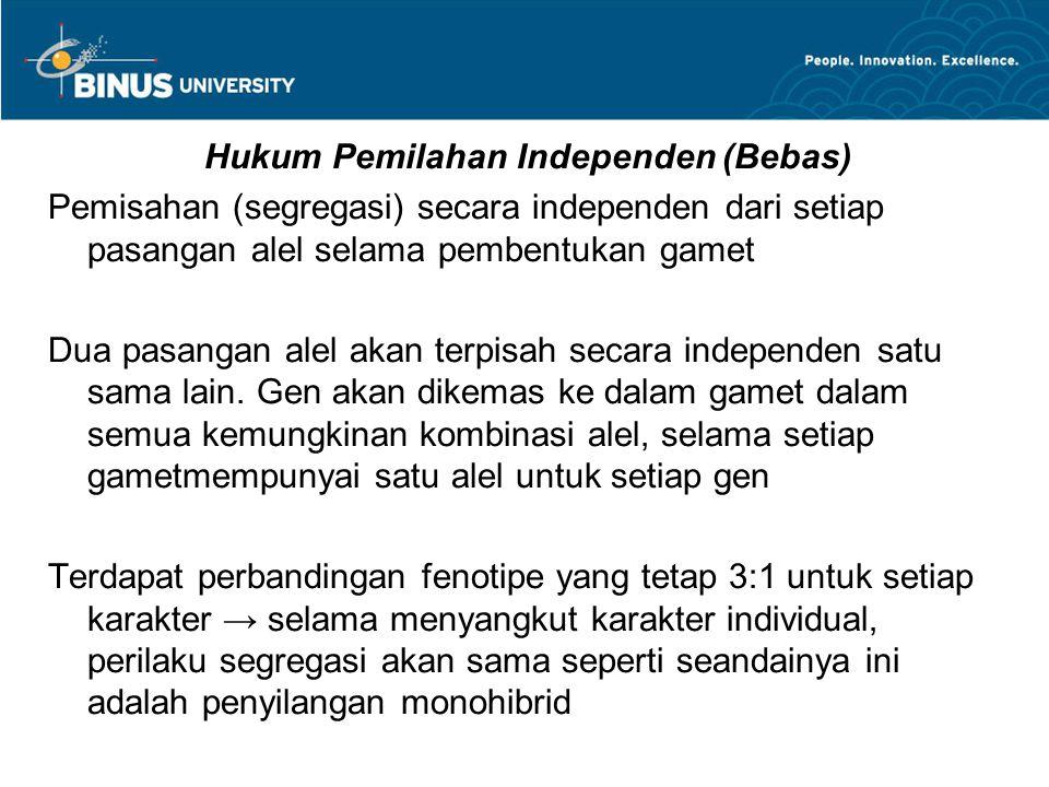 Hukum Pemilahan Independen (Bebas)