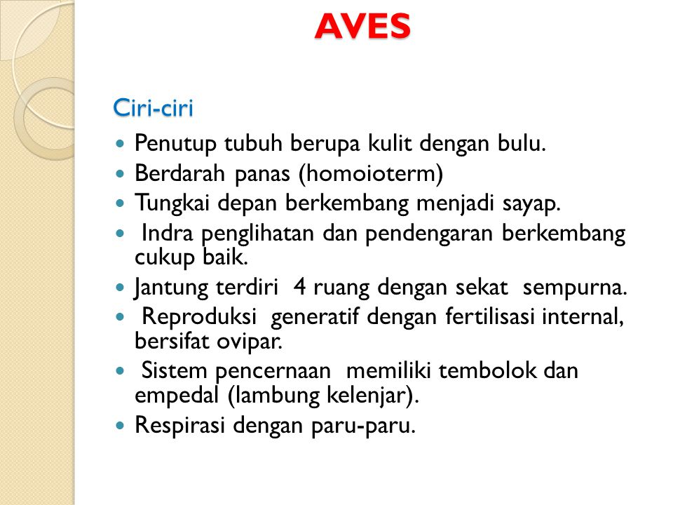 AVES Ciri-ciri Penutup tubuh berupa kulit dengan bulu.