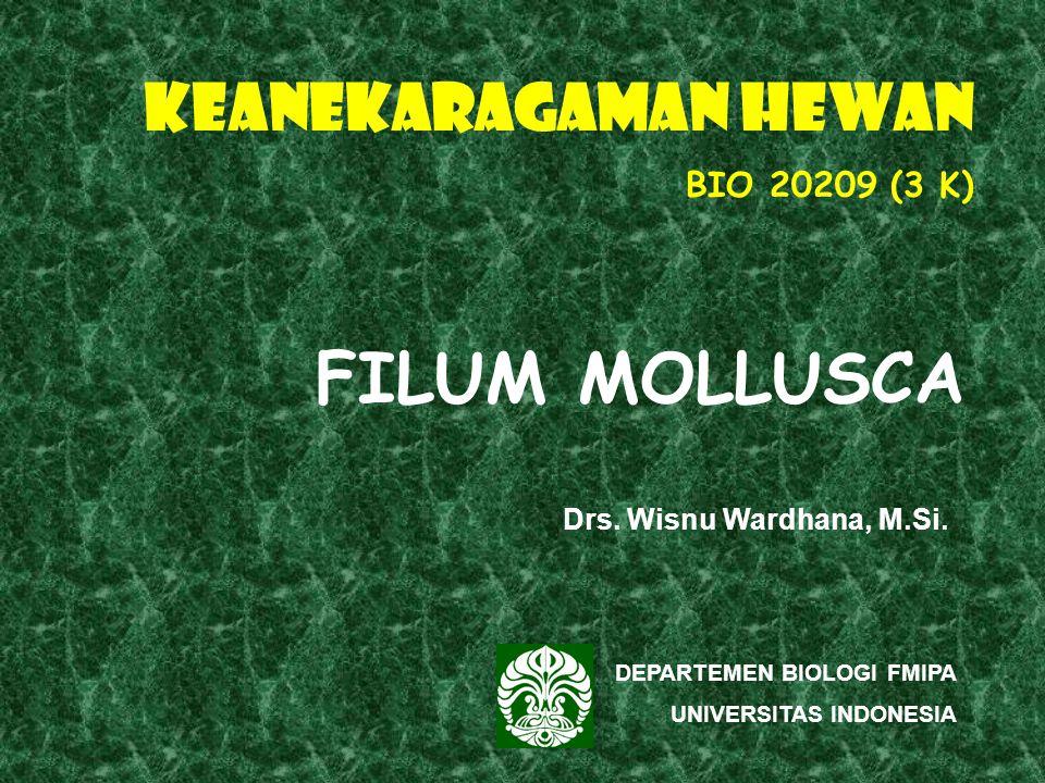 FILUM MOLLUSCA KEANEKARAGAMAN HEWAN BIO 20209 (3 K)