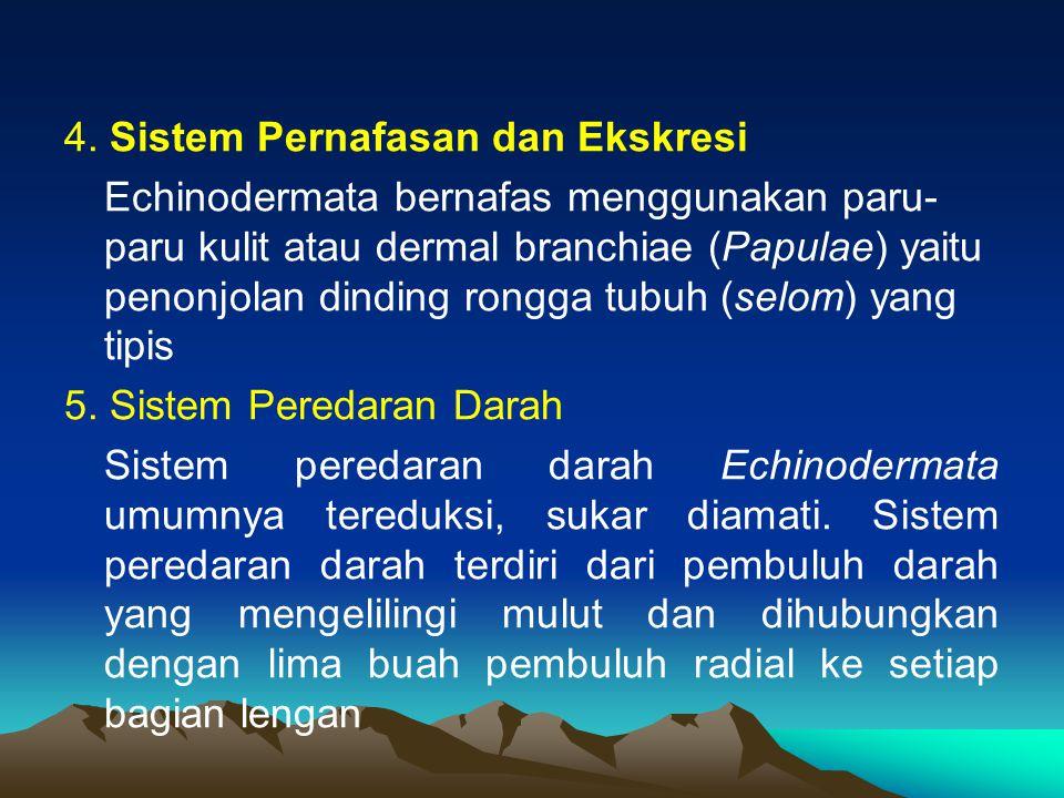 4. Sistem Pernafasan dan Ekskresi