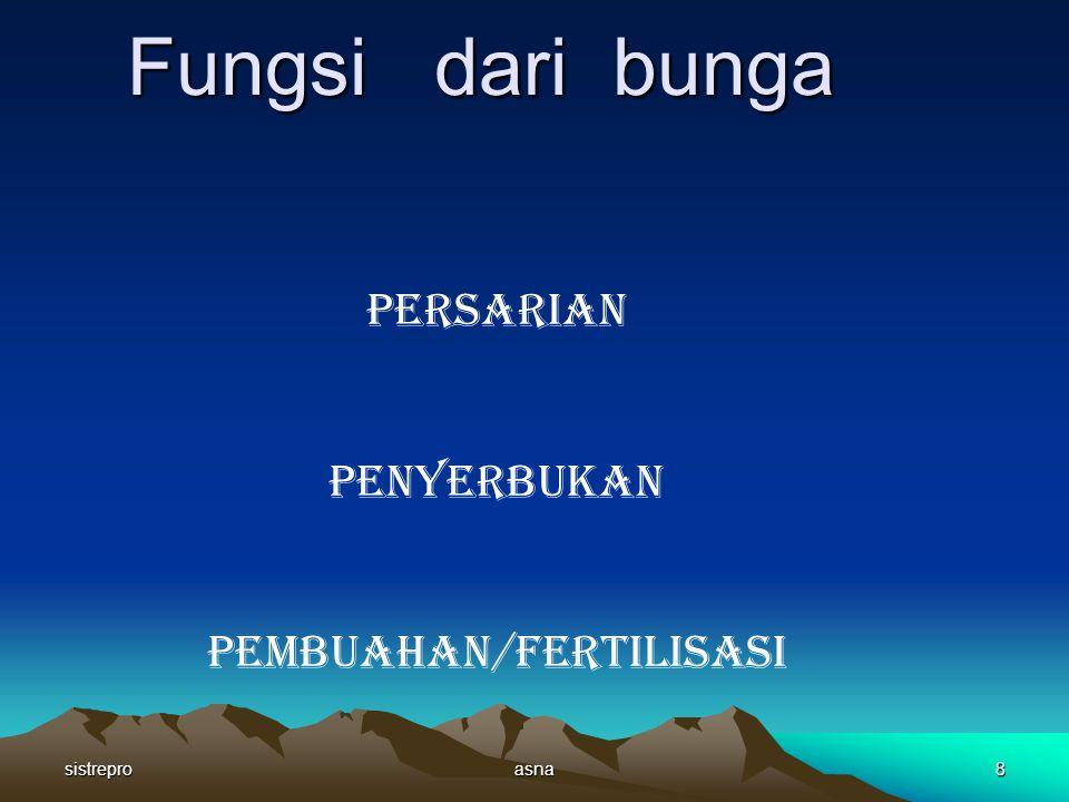 Pembuahan/fertilisasi