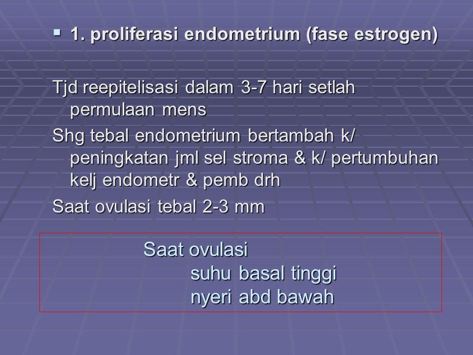 Saat ovulasi suhu basal tinggi nyeri abd bawah