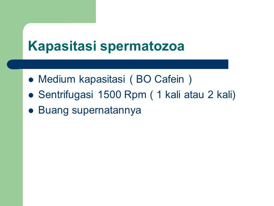 Kapasitasi spermatozoa
