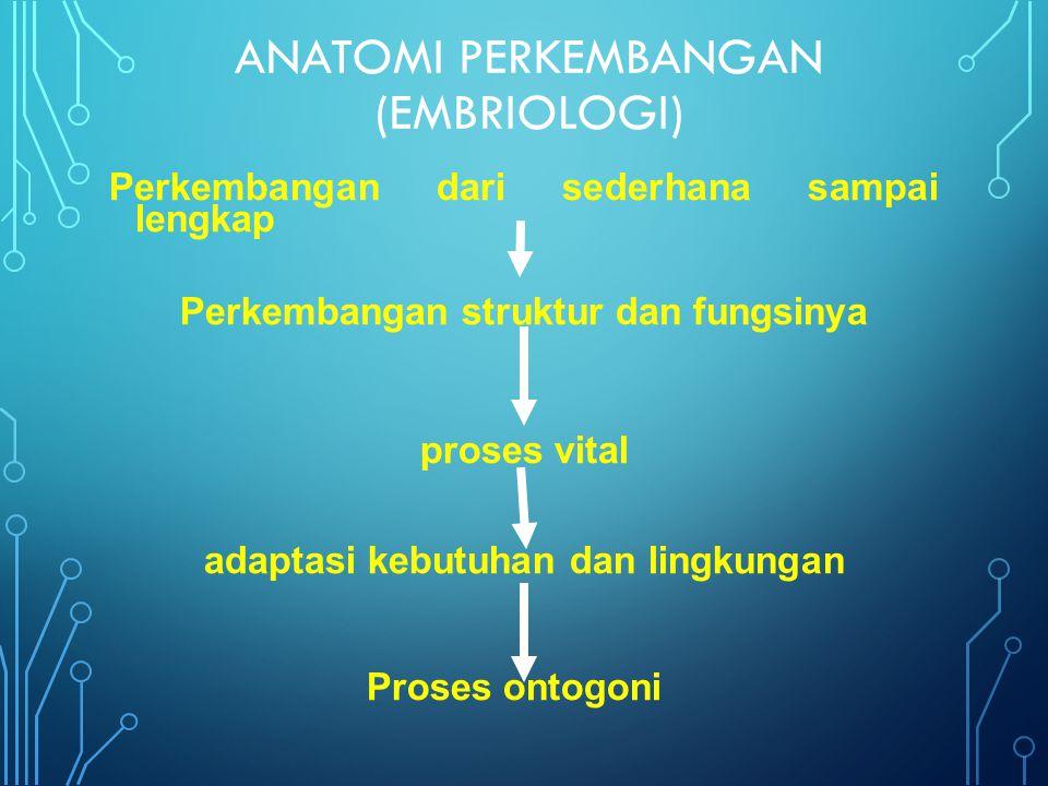 ANATOMI PERKEMBANGAN (EMBRIOLOGI)