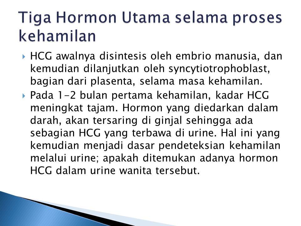 Tiga Hormon Utama selama proses kehamilan