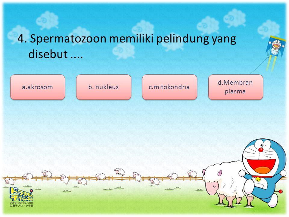 4. Spermatozoon memiliki pelindung yang disebut ....