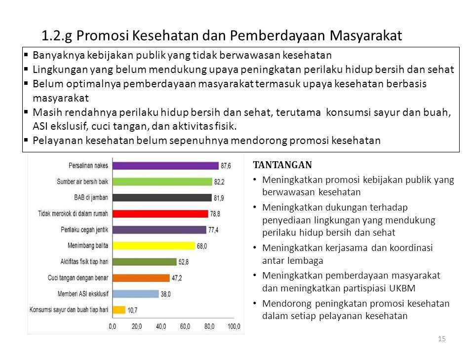 1.2.g Promosi Kesehatan dan Pemberdayaan Masyarakat
