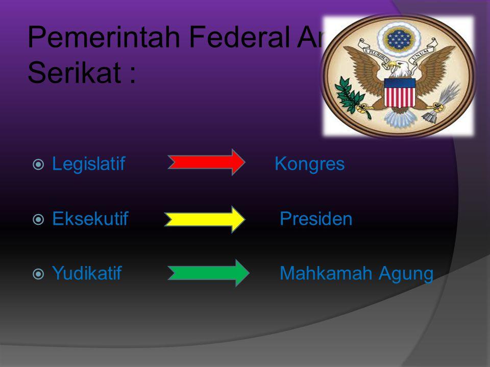Pemerintah Federal Amerika Serikat :
