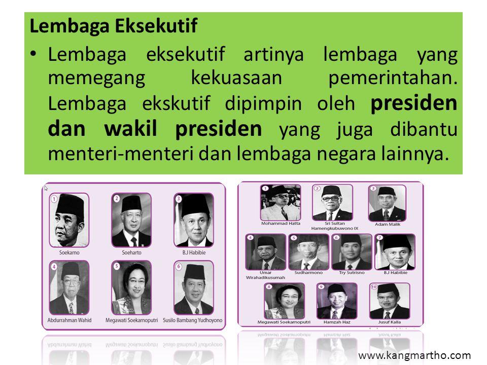 Lembaga Eksekutif