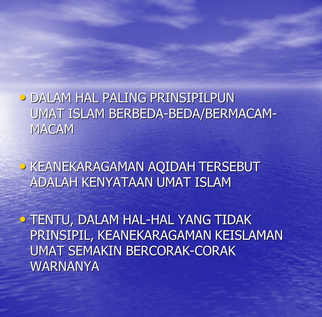 DALAM HAL PALING PRINSIPILPUN UMAT ISLAM BERBEDA-BEDA/BERMACAM-MACAM