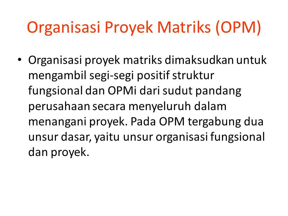 Organisasi Proyek Matriks (OPM)