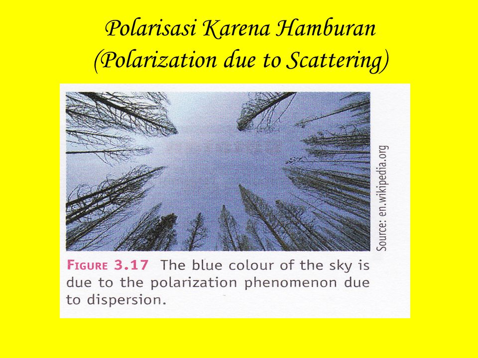 Polarisasi Karena Hamburan (Polarization due to Scattering)