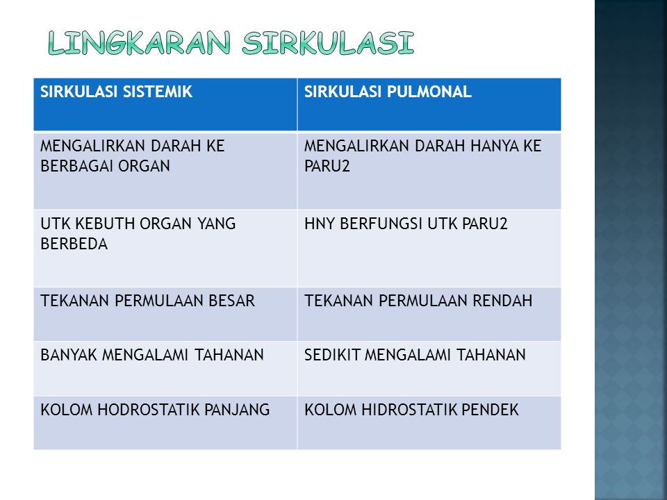Lingkaran sirkulasi SIRKULASI SISTEMIK SIRKULASI PULMONAL
