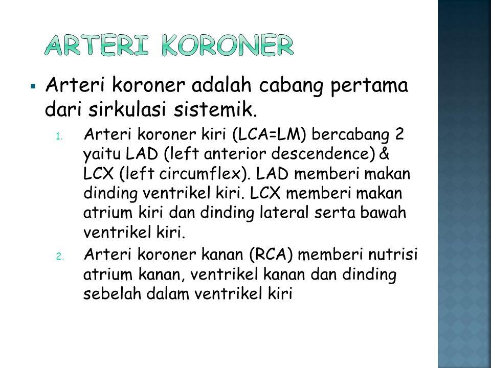 Arteri koroner Arteri koroner adalah cabang pertama dari sirkulasi sistemik.