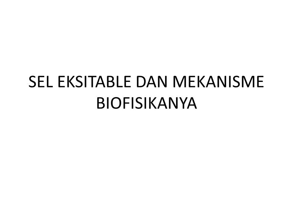 SEL EKSITABLE DAN MEKANISME BIOFISIKANYA