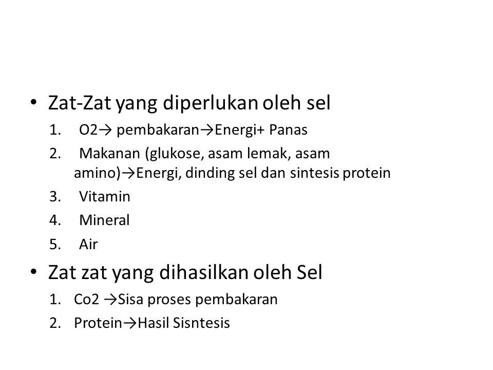 Zat-Zat yang diperlukan oleh sel