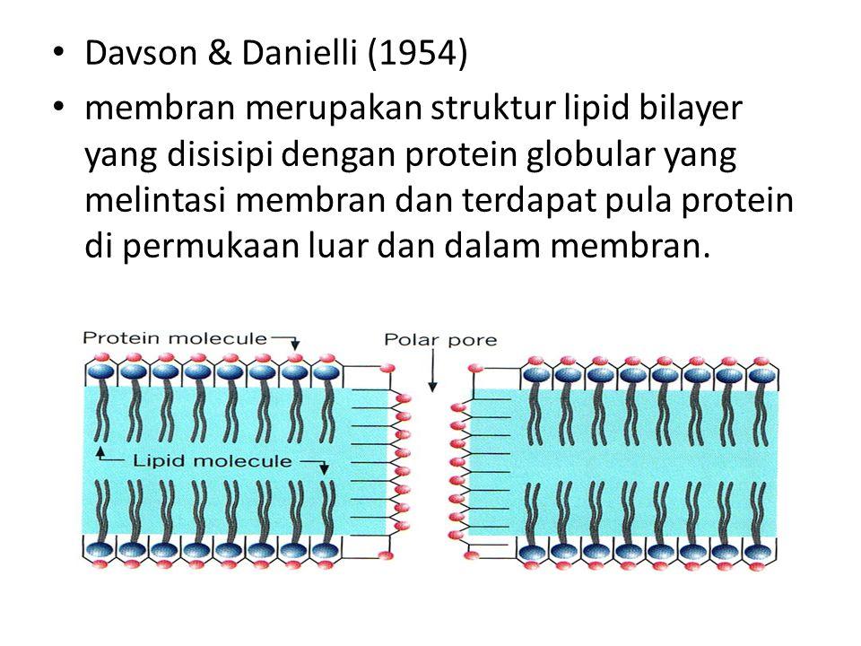 Davson & Danielli (1954)