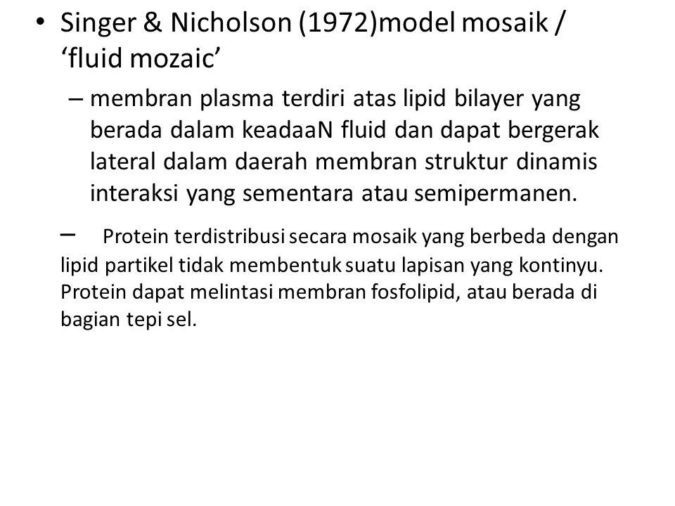 Singer & Nicholson (1972)model mosaik / 'fluid mozaic'