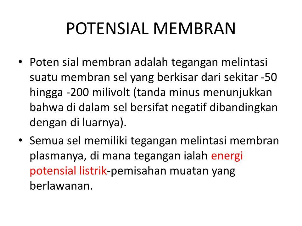 POTENSIAL MEMBRAN