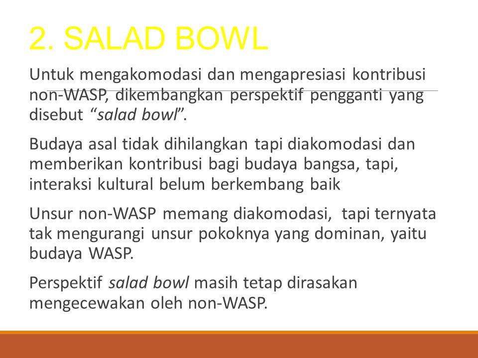 2. SALAD BOWL Untuk mengakomodasi dan mengapresiasi kontribusi non-WASP, dikembangkan perspektif pengganti yang disebut salad bowl .
