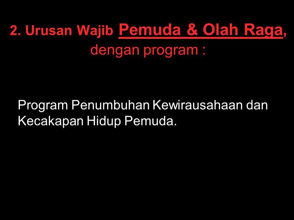 2. Urusan Wajib Pemuda & Olah Raga, dengan program :