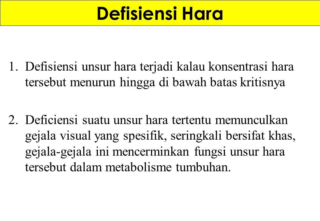 Defisiensi Hara Defisiensi unsur hara terjadi kalau konsentrasi hara tersebut menurun hingga di bawah batas kritisnya.