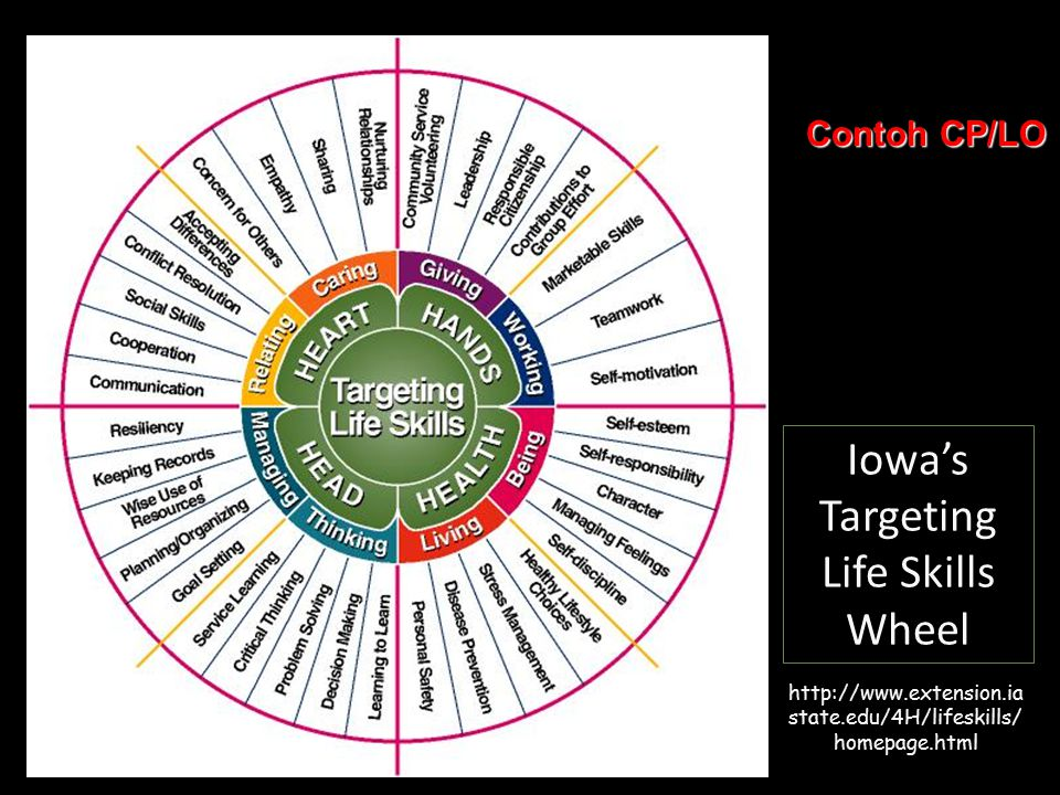 Iowa's Targeting Life Skills Wheel