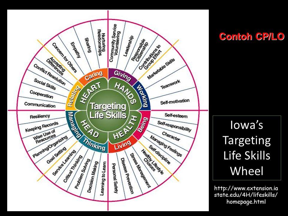 Iowa's Targeting Life Skills Wheel