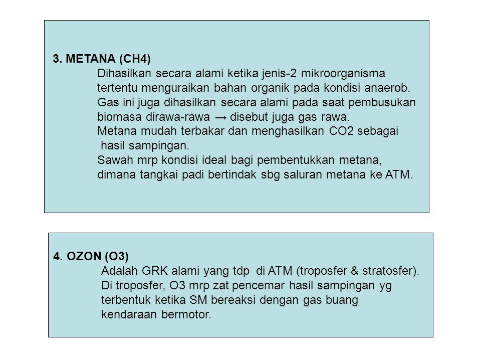 3. METANA (CH4) Dihasilkan secara alami ketika jenis-2 mikroorganisma. tertentu menguraikan bahan organik pada kondisi anaerob.