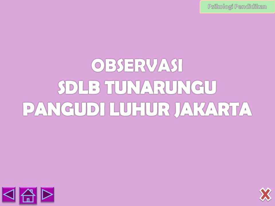 OBSERVASI SDLB TUNARUNGU PANGUDI LUHUR JAKARTA