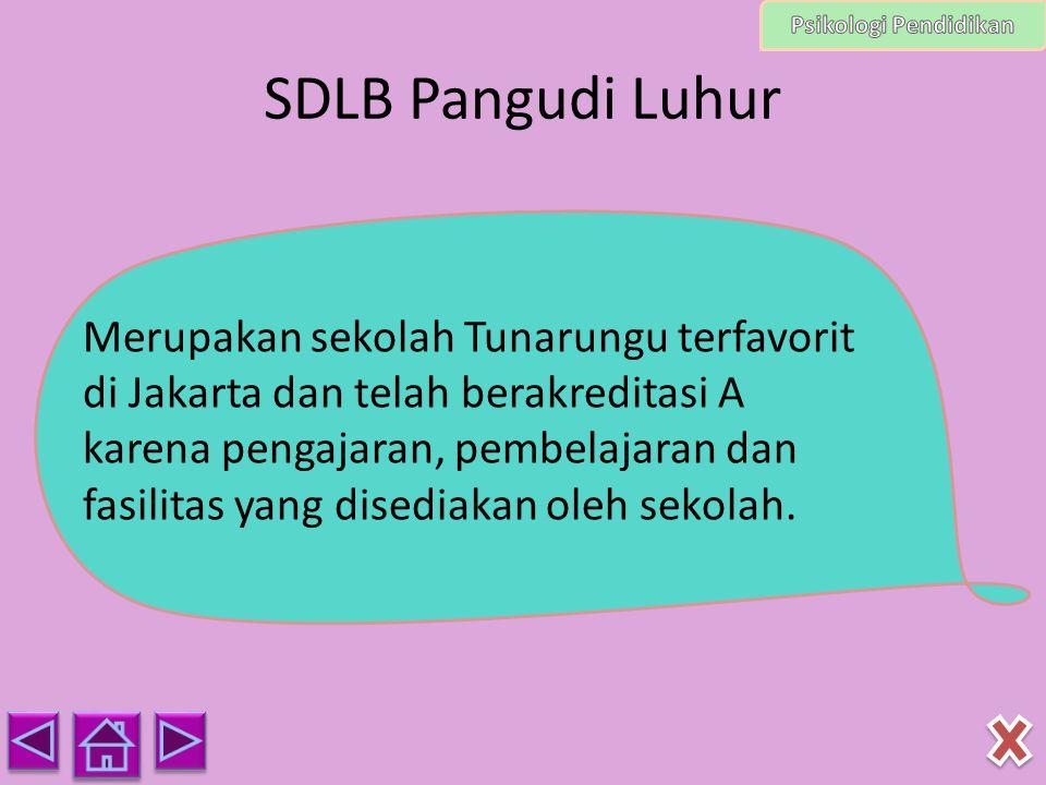 Psikologi Pendidikan SDLB Pangudi Luhur.