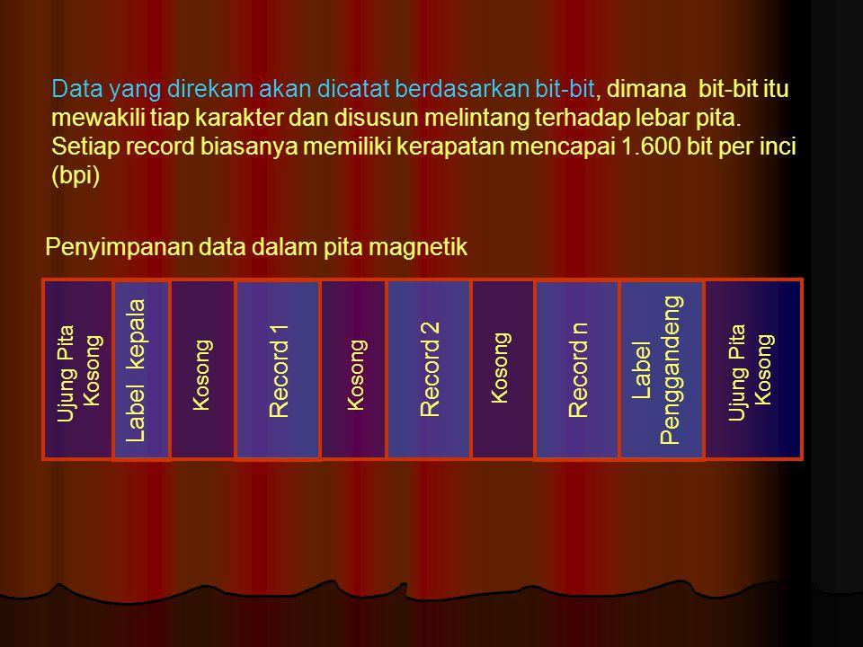 Penyimpanan data dalam pita magnetik