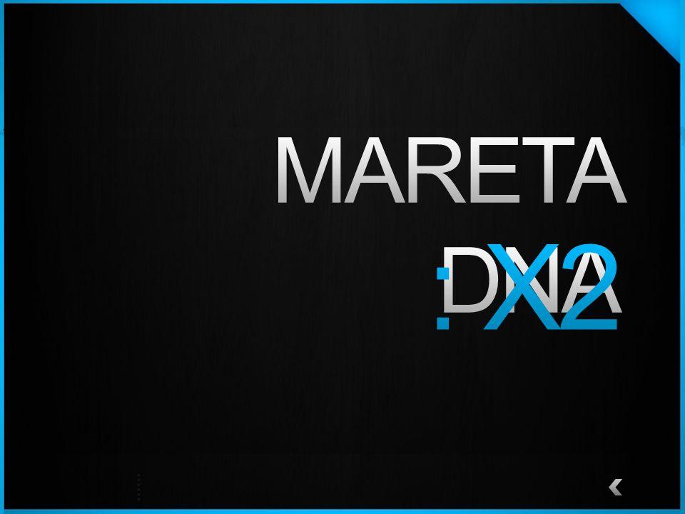 MARETA DNA : X2