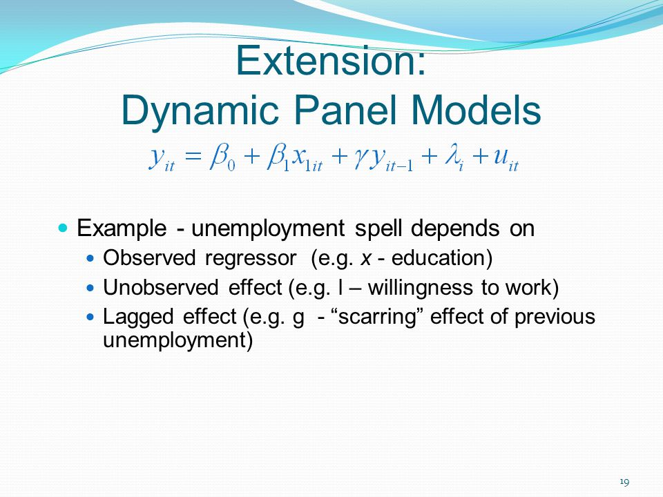 Extension: Dynamic Panel Models