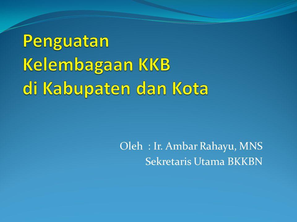 Penguatan Kelembagaan KKB di Kabupaten dan Kota