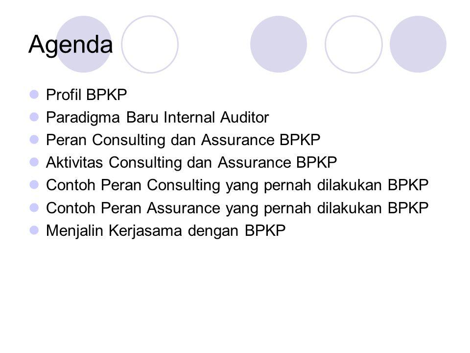 Agenda Profil BPKP Paradigma Baru Internal Auditor