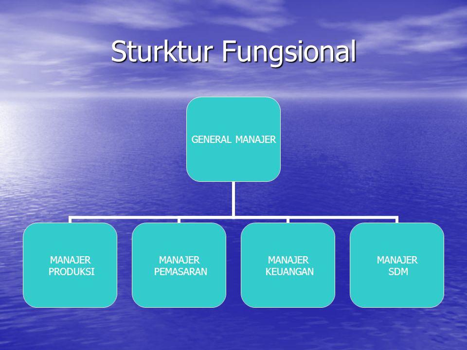 Sturktur Fungsional