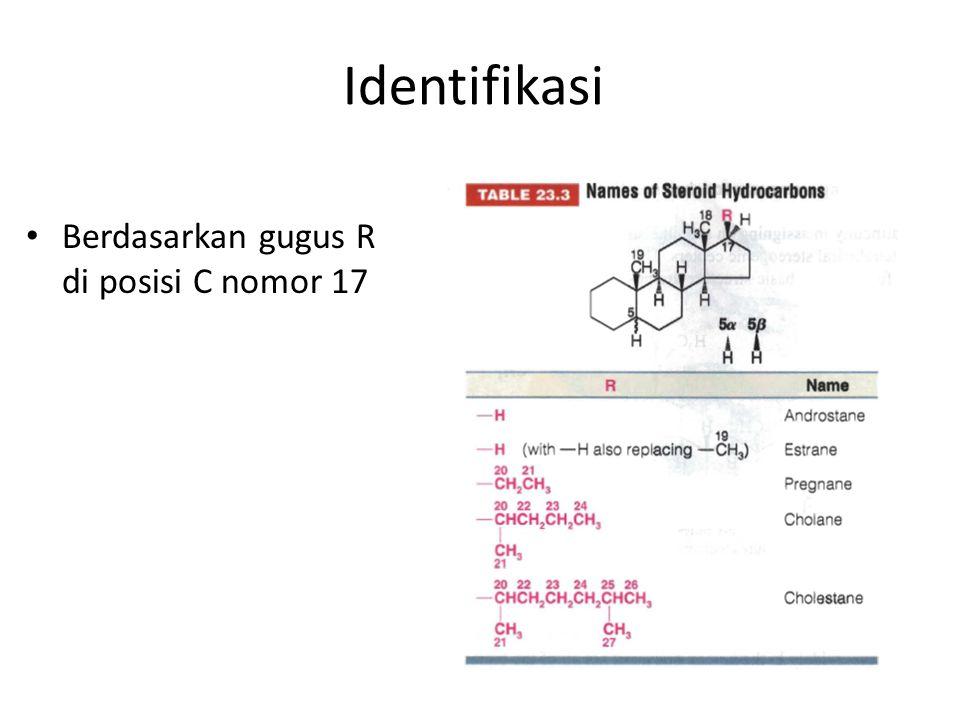 Identifikasi Berdasarkan gugus R di posisi C nomor 17