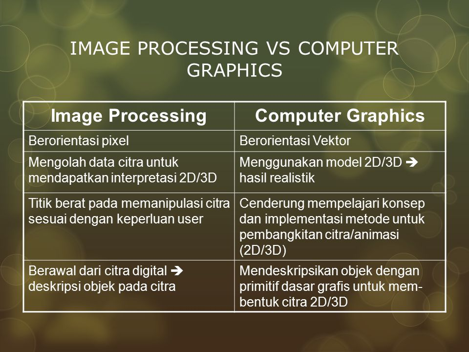 IMAGE PROCESSING VS COMPUTER GRAPHICS