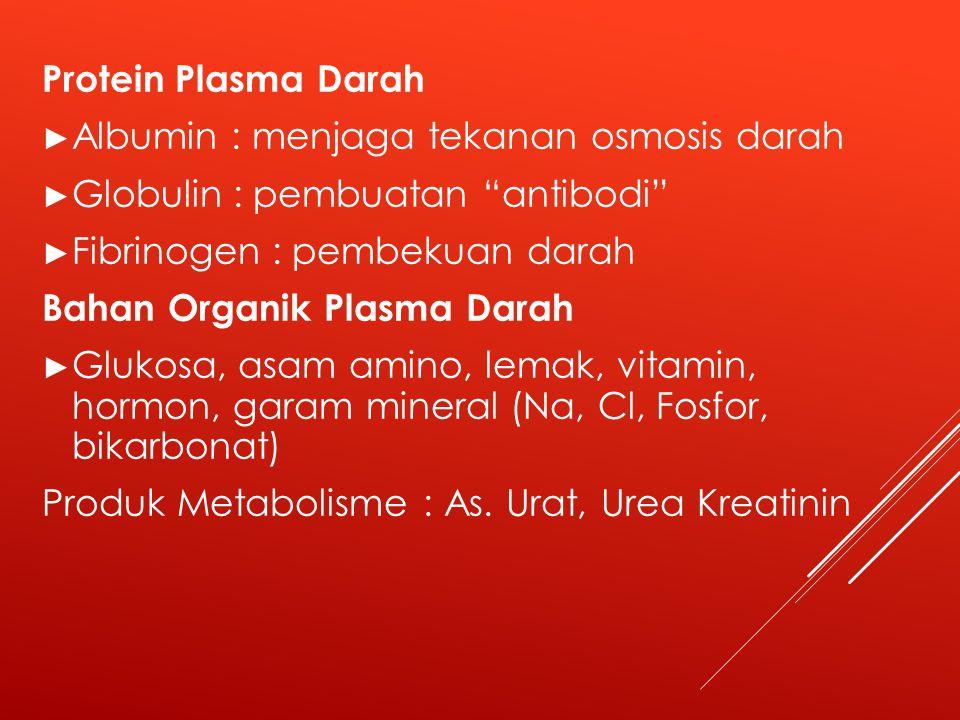 Protein Plasma Darah Albumin : menjaga tekanan osmosis darah. Globulin : pembuatan antibodi Fibrinogen : pembekuan darah.