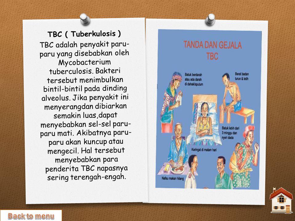 TBC ( Tuberkulosis )