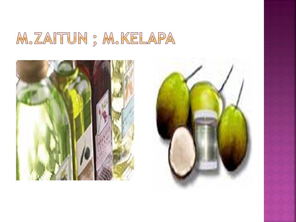 m.zaitun ; m.kelapa