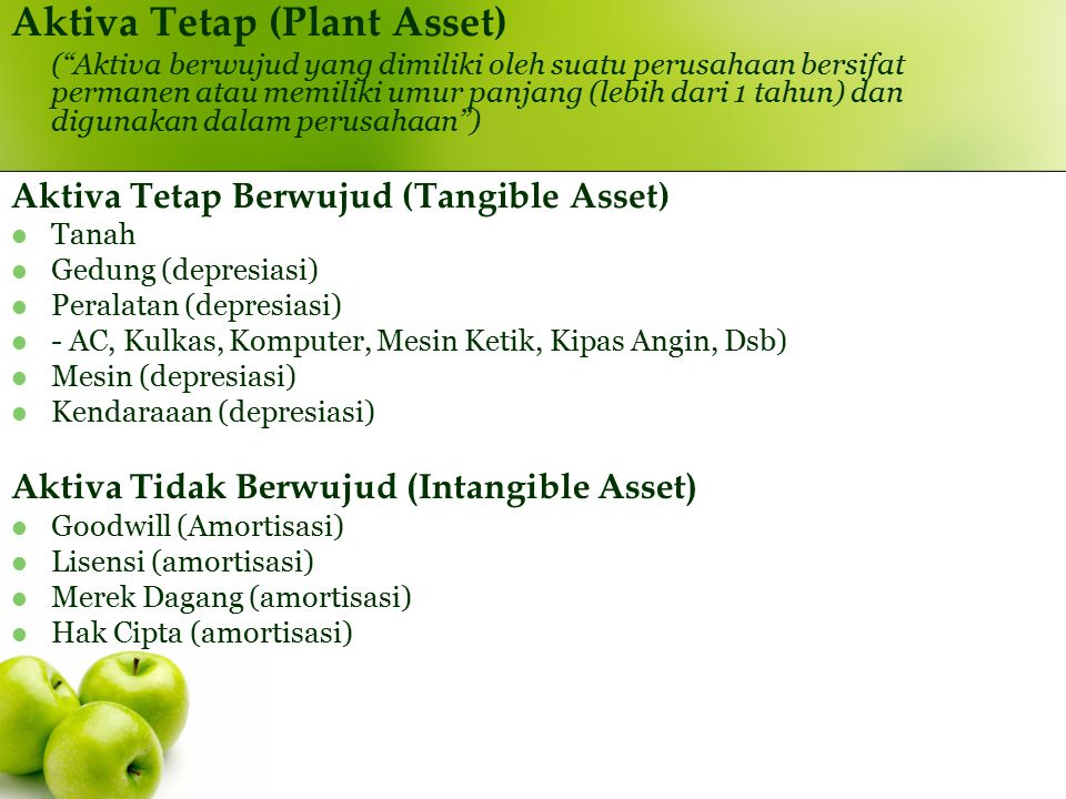 Aktiva Tetap (Plant Asset)