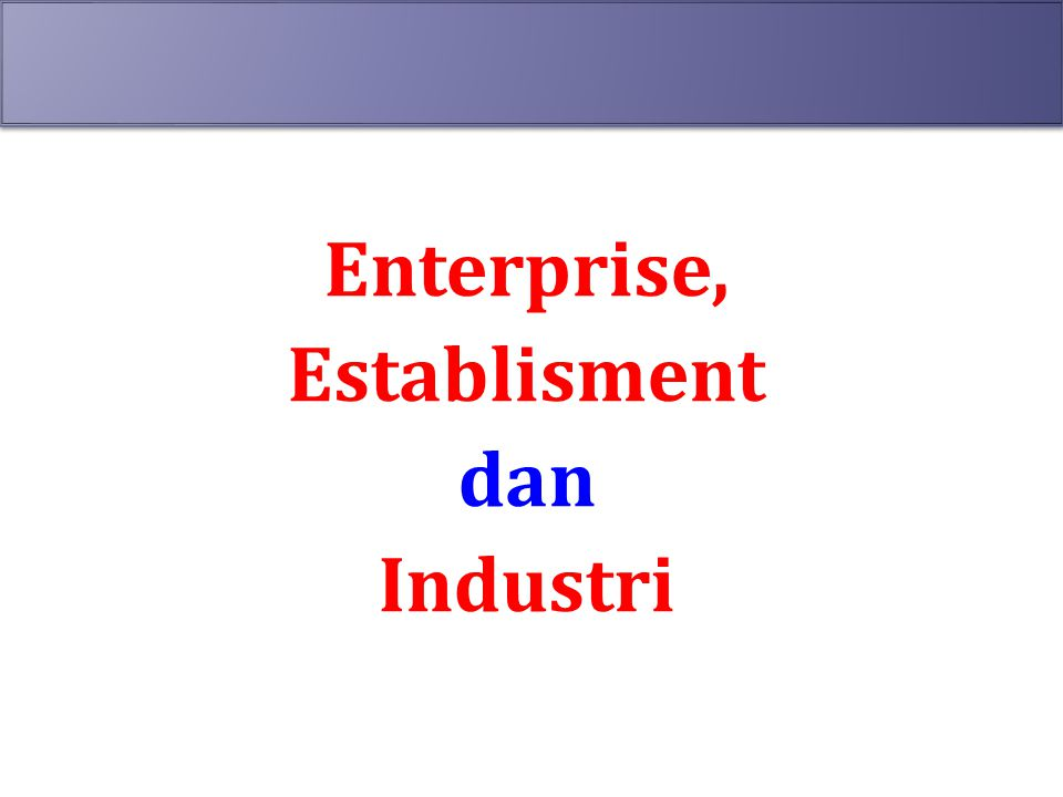 Enterprise, Establisment dan Industri