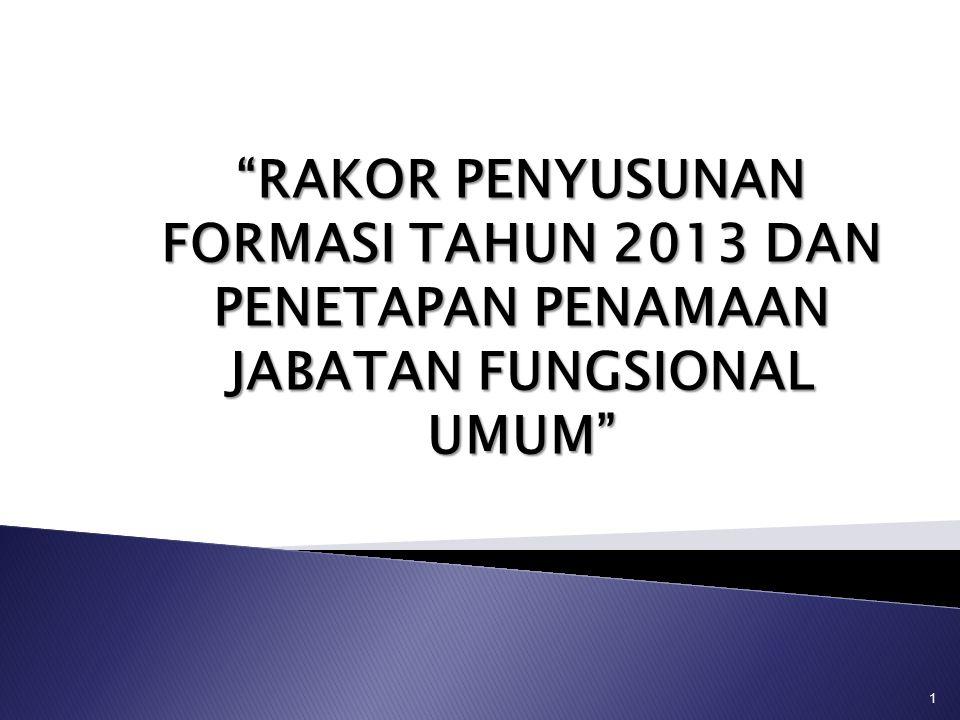 RAKOR PENYUSUNAN FORMASI TAHUN 2013 DAN PENETAPAN PENAMAAN JABATAN FUNGSIONAL UMUM