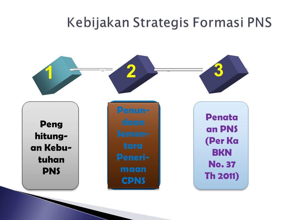 Kebijakan Strategis Formasi PNS