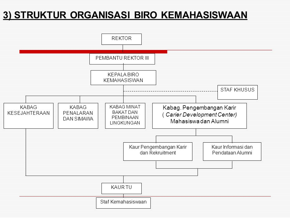 3) STRUKTUR ORGANISASI BIRO KEMAHASISWAAN