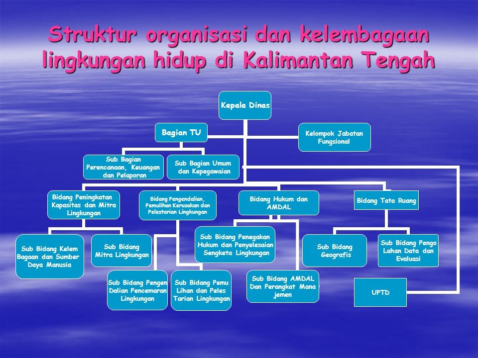 Struktur organisasi dan kelembagaan lingkungan hidup di Kalimantan Tengah